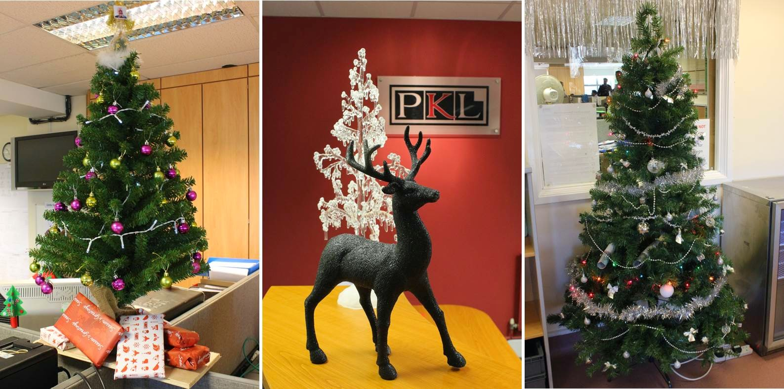 PKL Christmas - trees and decorations