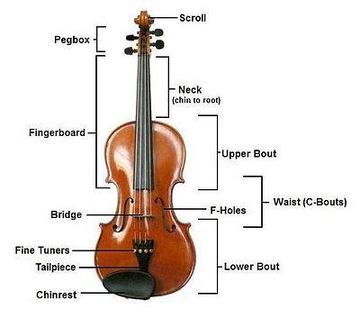 cau tao dan violin