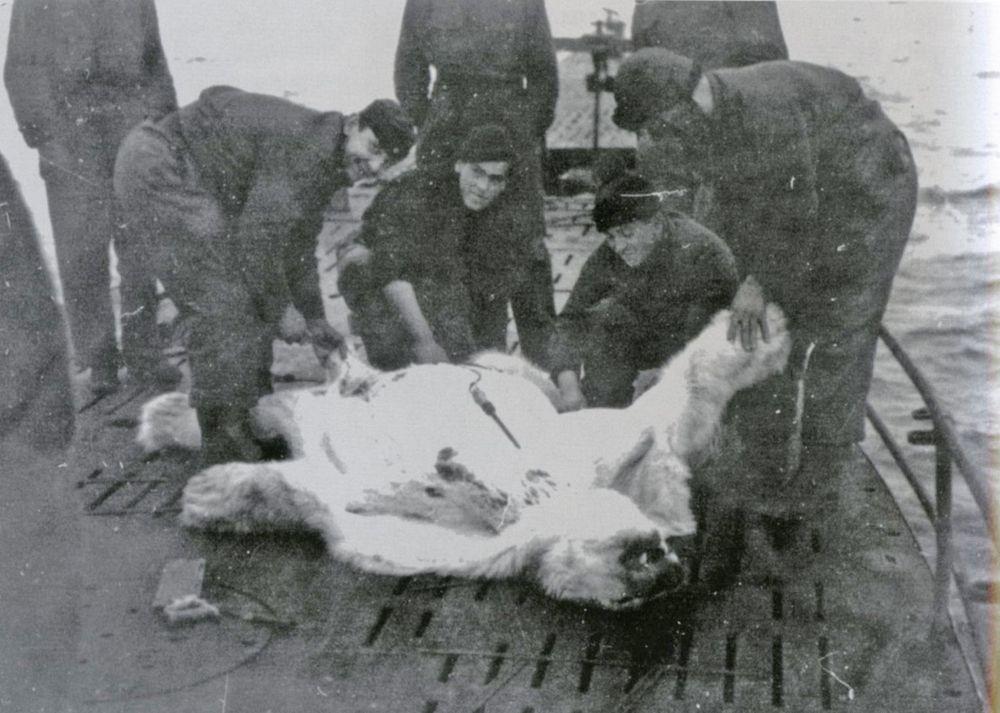 Operation Haudegen