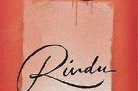 Download Novel Rindu Tere Liye PDF