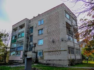 Васильковка. Ул. Спортивная. Жилой дом