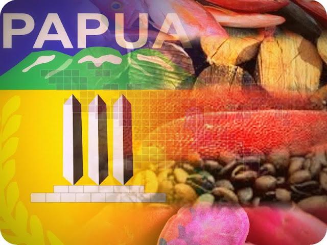 BPTPM Klaim Iklim Investasi Non Tambang di Papua Melambat