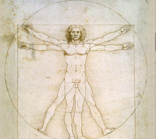 Anatomia e Leonardo da Vinci