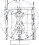 Geometry and the Vitruvian Man