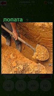 мужчина лопатой выкапывает яму