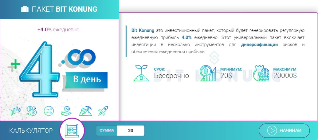 Инвестиционные планы Bit Konung