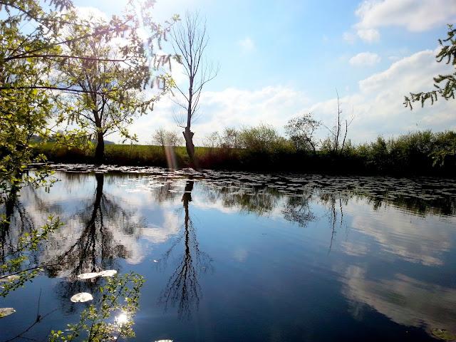jezioro odbicie
