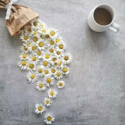 Flori, cafea si iubire!