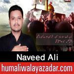 http://www.humaliwalayazadar.com/2016/10/naveed-ali-nohay-2017.html