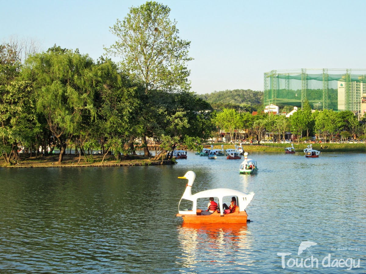 A family is riding a swan boat in Suseong Lake