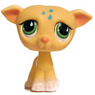 Littlest Pet Shop Multi Pack Greyhound (#875) Pet