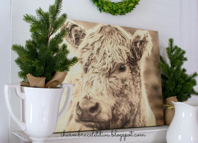 Farmhouse Scottish Highland cow wall art canvas
