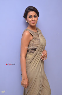 Nikki Galrani in Saree 037.JPG