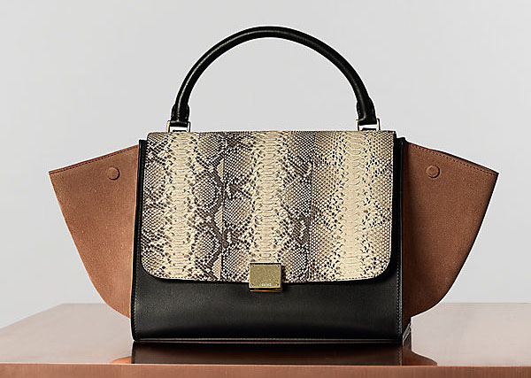 39cbffb9b160 My Small Obsessions  CELINE S IT BAG- The TRAPEZE
