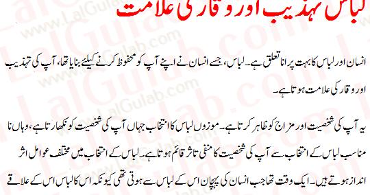 Short essay on Pakistani Cricket Team
