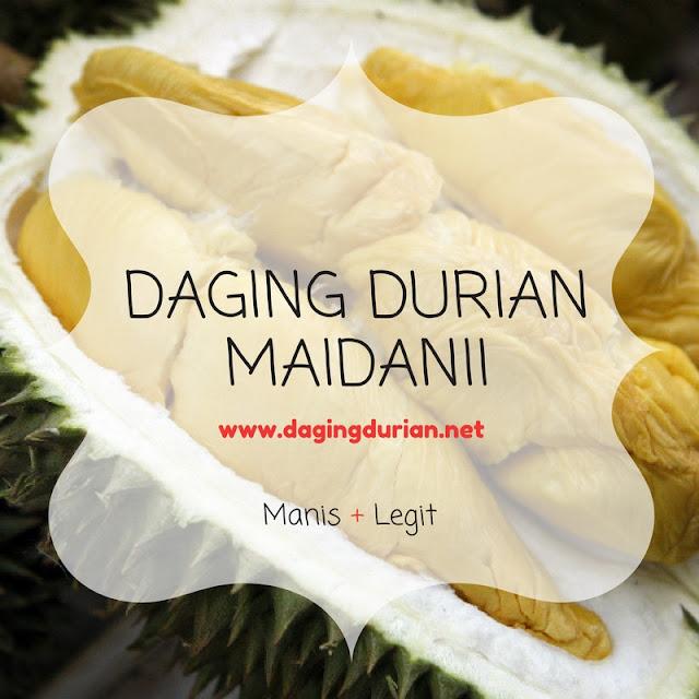 agen-daging-durian-medan-maidanii-di-trenggalek