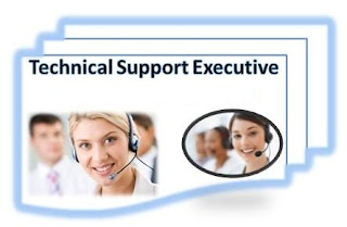 Technical Support Executive / ERP Implementer