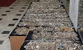 Οι φωτογραφίες από τα 700 κιλά κοσμήματα που βρήκε η Αστυνομία στο Χαλάνδρι