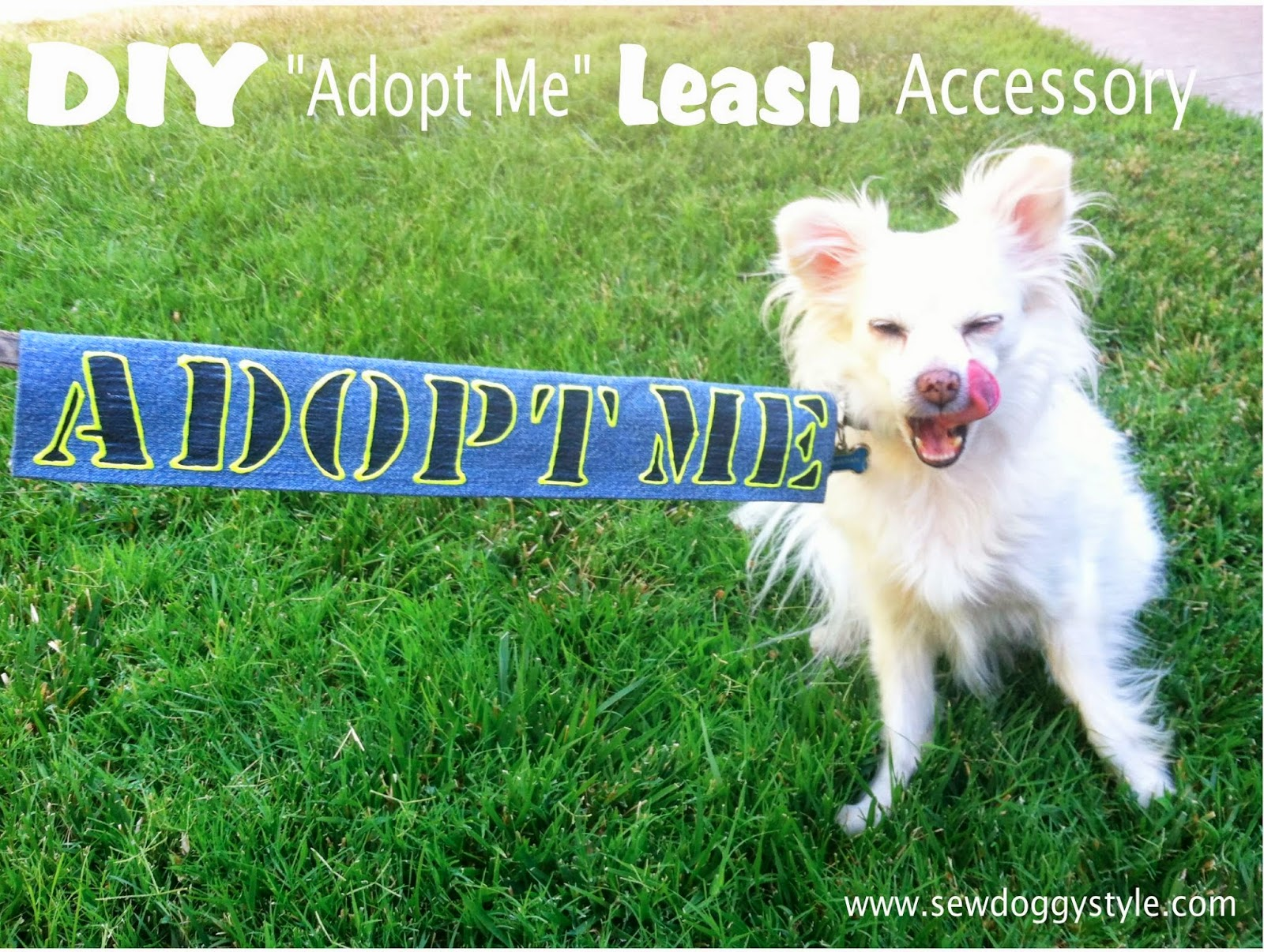 9 Let The Glue Dry Completely Before Testing Out Your New Leash Accessory