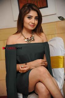 Kannada Actress Karunya Ram Stills in Strapless Green Short Dress at Eradu Kanasu Movie Press Meet  0006.jpg