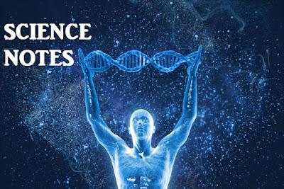 Vitamin Deficiency Diseases | Questions asked in CDS, AFCAT, NDA Exams