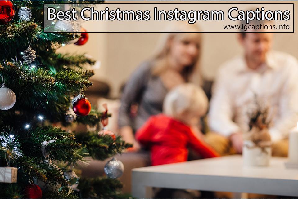 100+ Best Christmas Captions for Instagram | Christmas