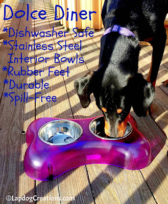 Penny knows the benefits of the Dolce Diner - do you? The dishwasher safe elevated feeding dishes are durable and dishwasher safe! ©LapdogCreations #LapdogCreations #LovingPets