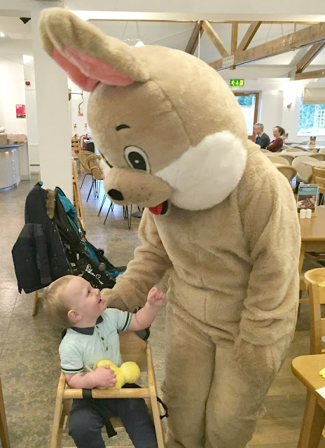 Jacob and Easter bunny