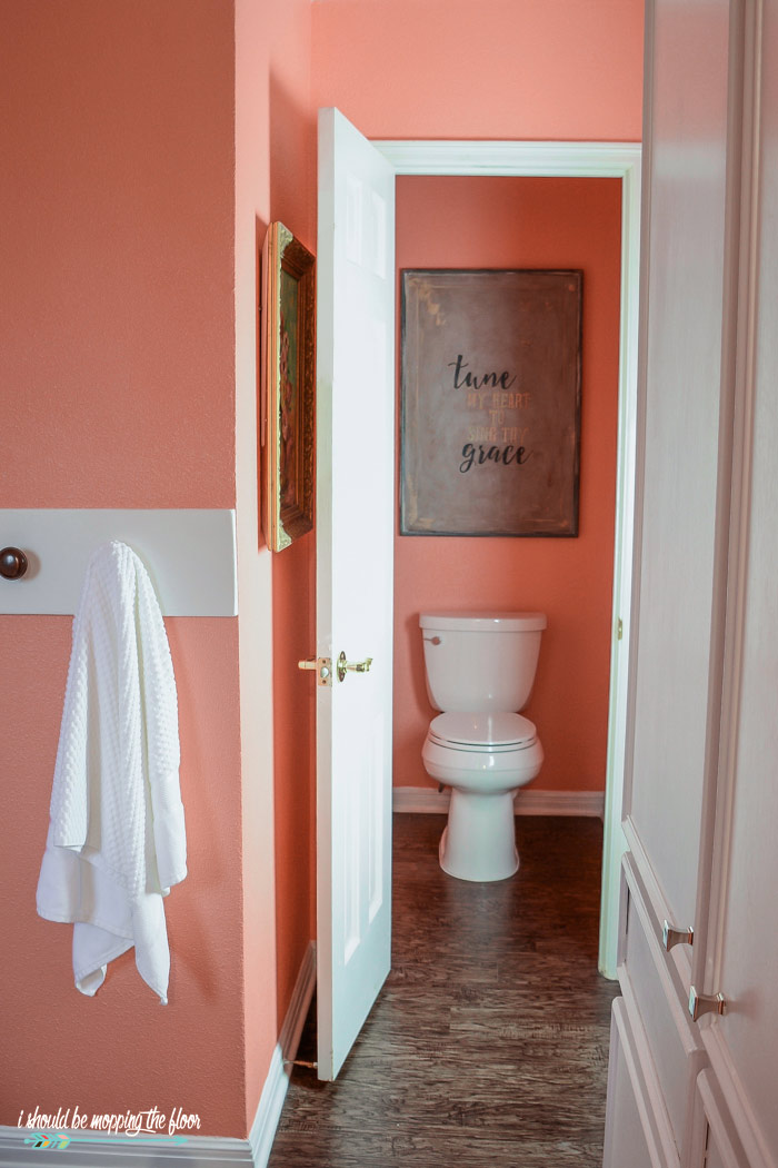 Classic Coral Paint