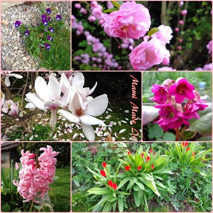 Spring Flowers - Frühlingsblumen