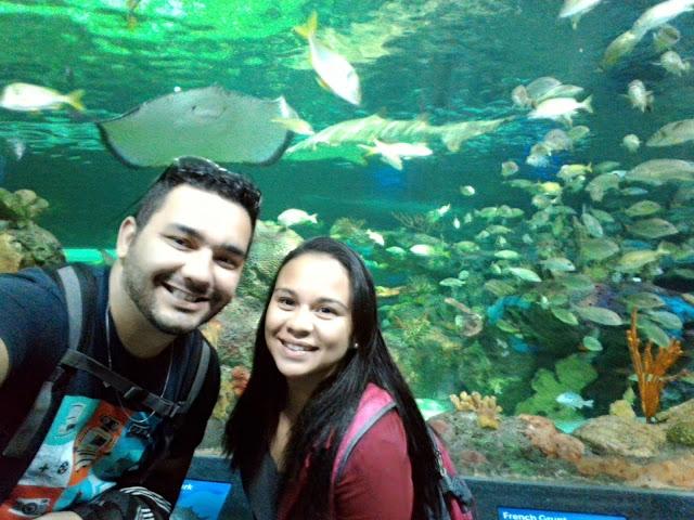 aquarium-canada-toronto