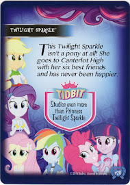 My Little Pony Twilight Sparkle Equestrian Friends Trading Card