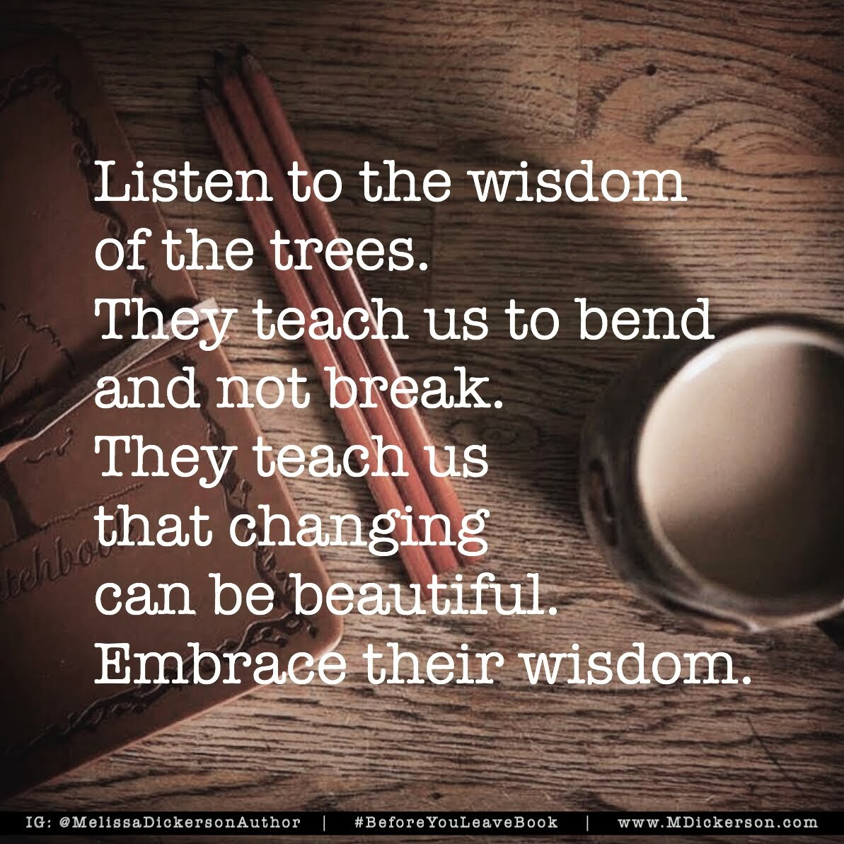 Wisdom Of The Trees from MDickerson.com