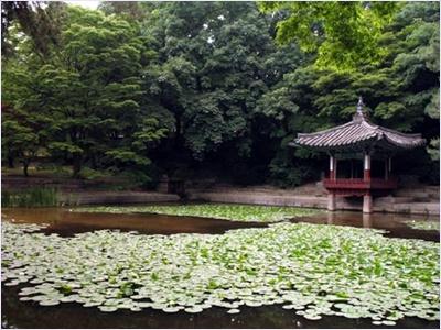 อุทยานลับพีวอน (Bewon) - พระราชวังชางด๊อก (Changdeokgung Palace)