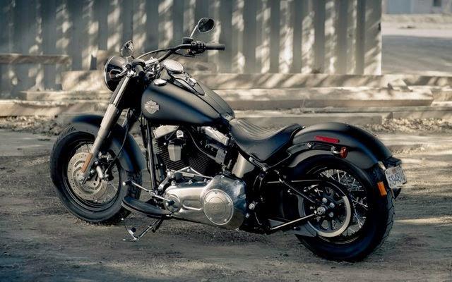 Harley-Davidson Softail Fat Boy FLSTF Repair Manuals