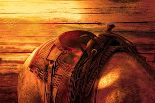 horses-back-587609__340.jpg