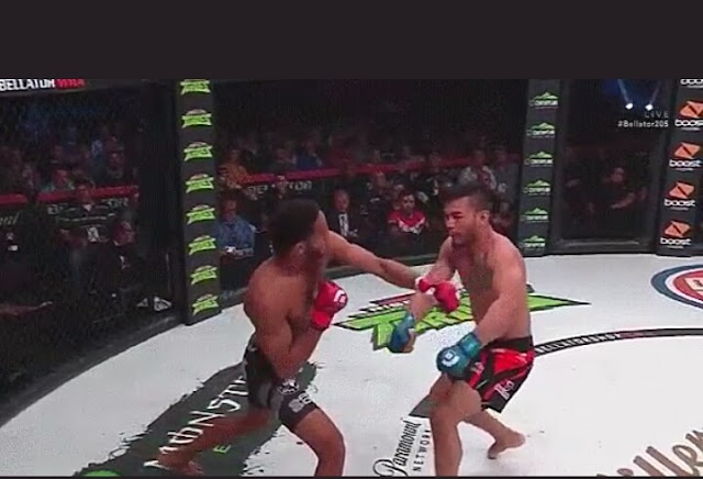 Bellator 205 Results A.J. McKee destroys John Macapa With One Punch