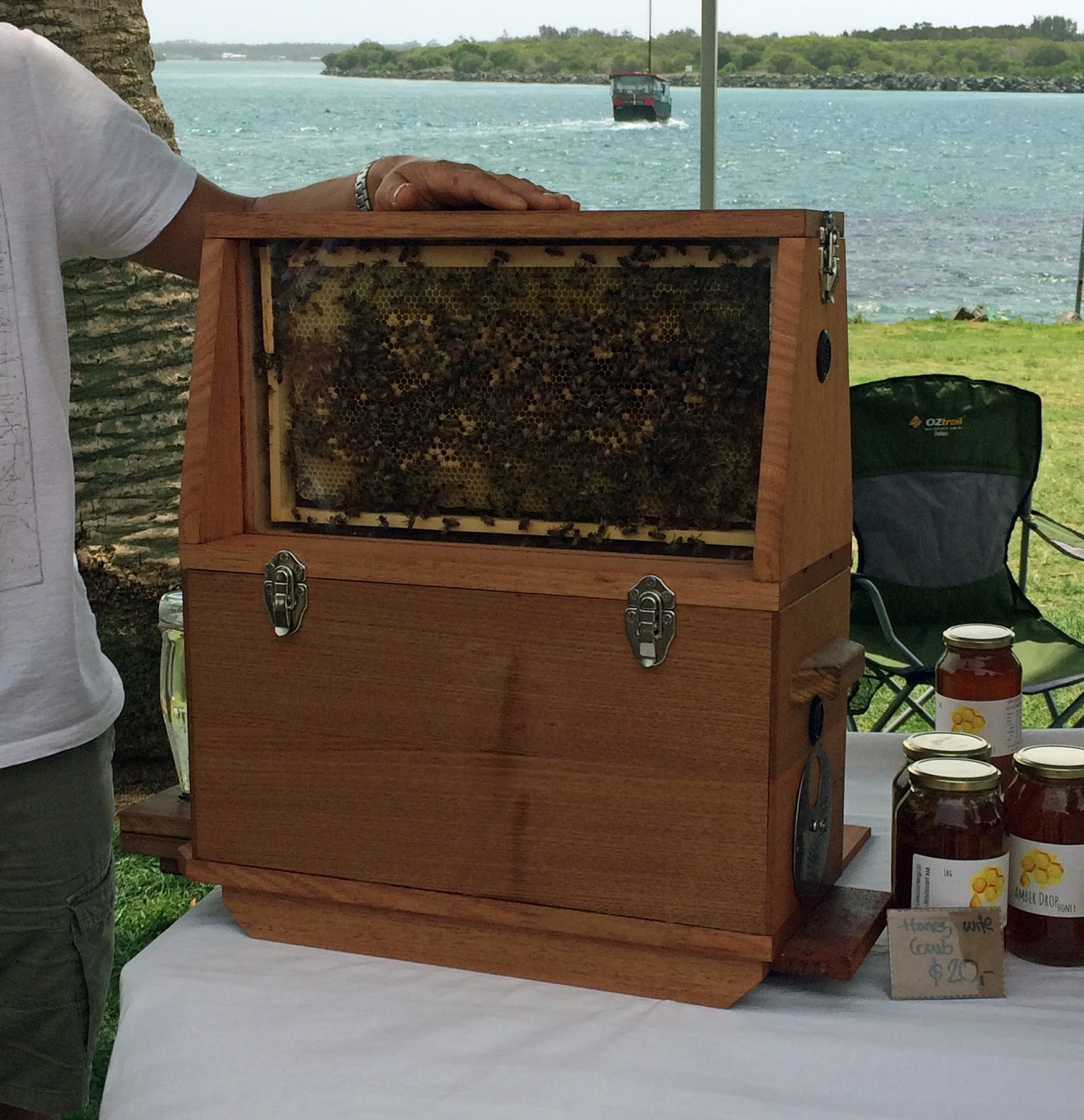 Honey Bees at Port Macquarie Tastings on Hastings Festival Day