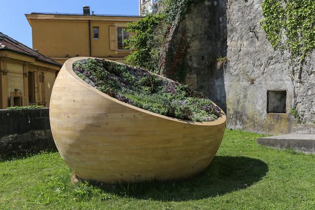 jardín en maceta