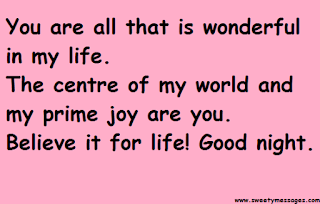 You are all that is wonderful in my life. The centre of my world and my prime joy are you. Believe it for life! Good night.