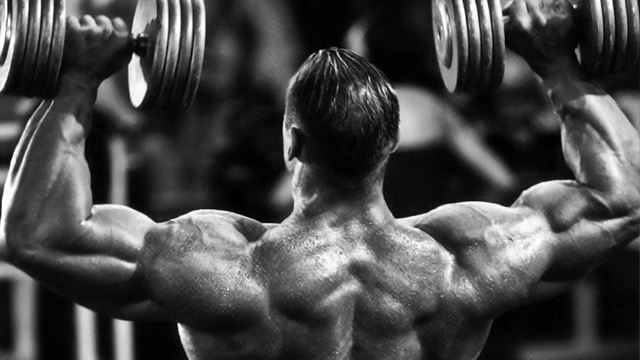 bodybuilding training splits