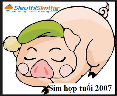 Sim hợp tuổi 2007