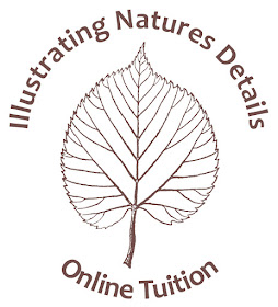 **NEW** ONLINE TUITION