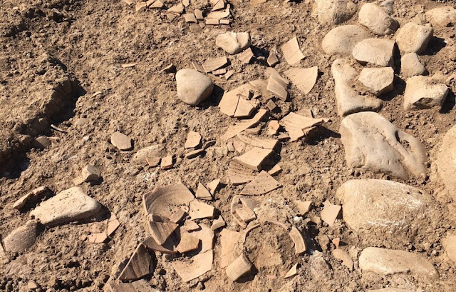 Excavations at Himera in Sicily uncover Sanctuary buildings