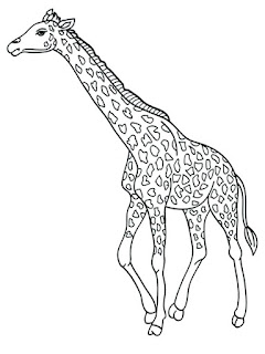 Giraffe Coloring Pages Animals Ideas For Print