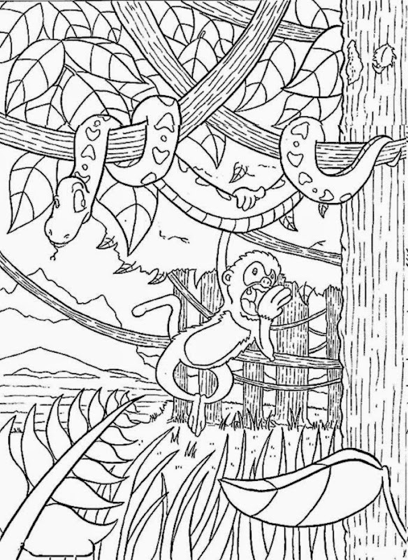 Free Coloring Pictures: Rainforest Coloring Pictures