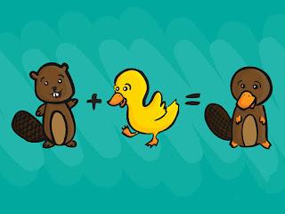 Contoh Evolusi Konvergen dan Divergen