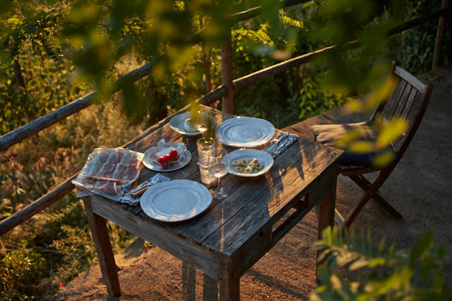 A rustic kitchen and favorite table under the fig tree