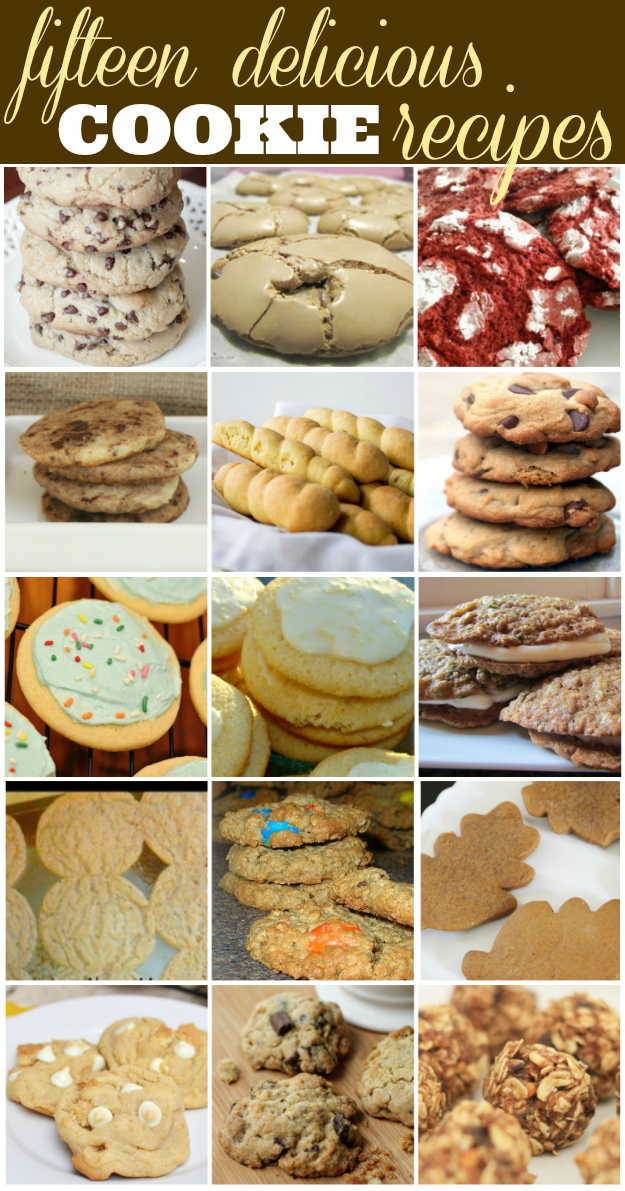 15 Delicious Cookie Recipes- A Round Up!