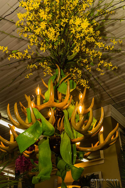 Luxury An Antler chandelier